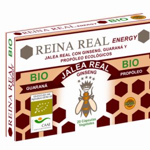 RR ENERGY BIO 2