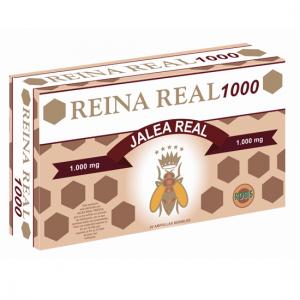 RR 1000 NUEVA